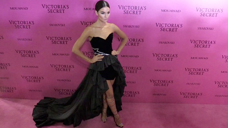Lily Aldridge, Stella Maxwell and more on the Pink Carpet after the Victoria Secret Fashion Show in