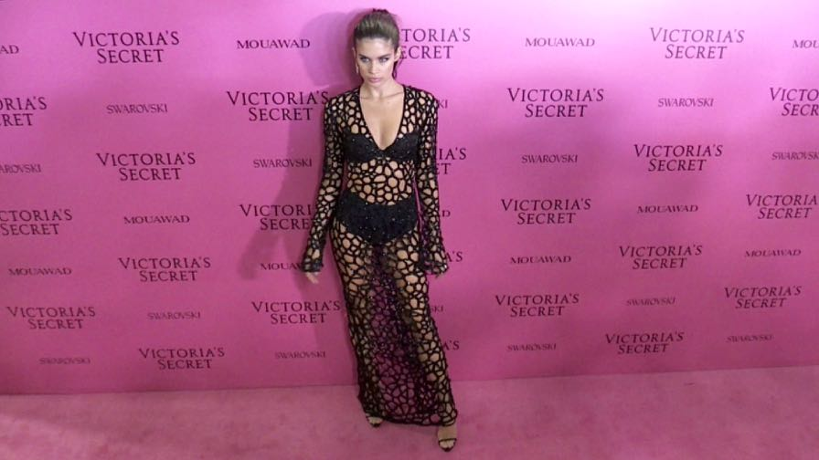 Sara Sampaio, Martha Hunt and more on the Pink Carpet after the Victoria Secret Fashion Show