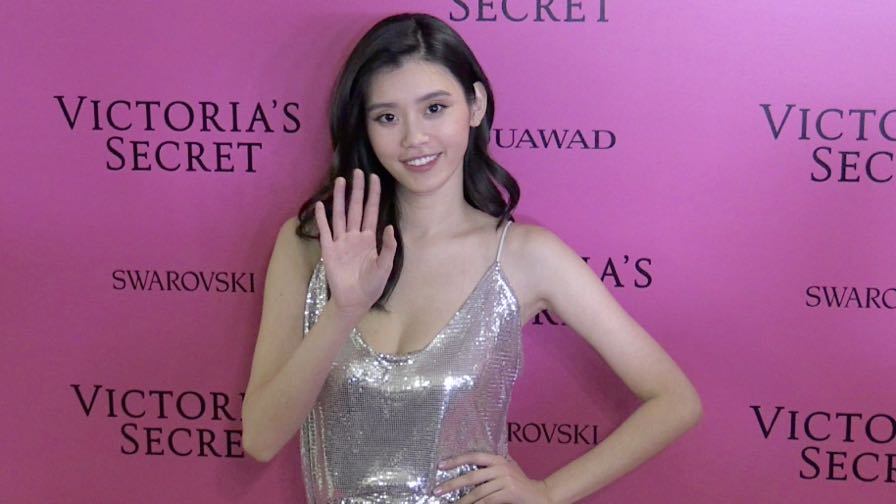 Daniela Braga and more on the Pink Carpet after the Victoria Secret Fashion Show in Shanghai