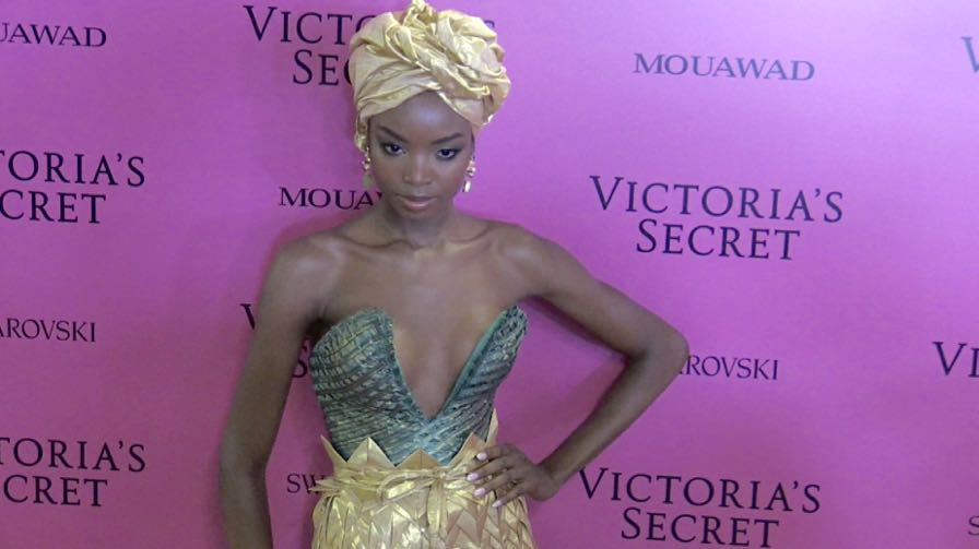 Maria Borges and more on the Pink Carpet after the Victoria Secret Fashion Show in Shanghai