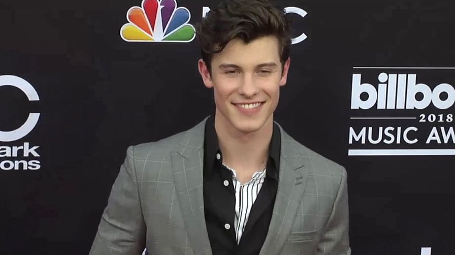 Shawn Mendes on the red carpet for the 2018 Billboard Music Awards